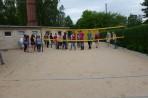 Volley105