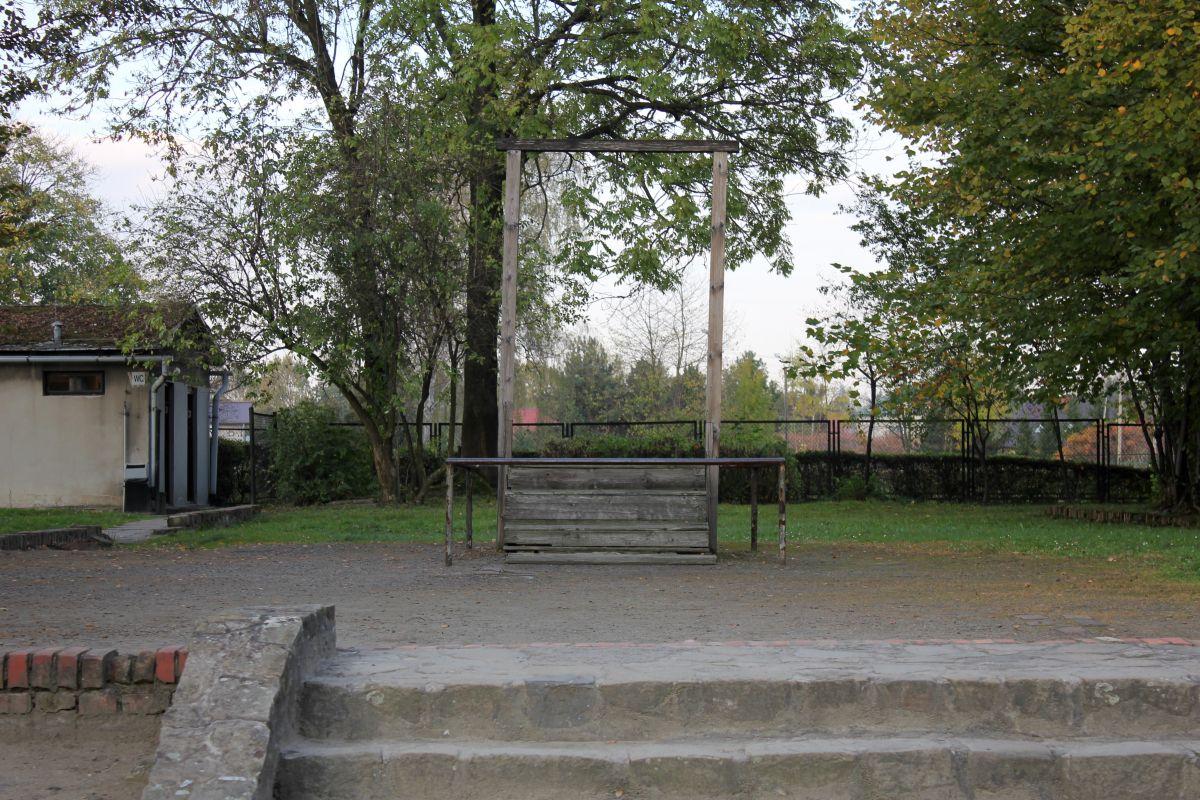 Auschwitz 14 2 345