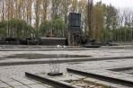 Auschwitz 14 3 313