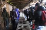 Auschwitz 14 3 328