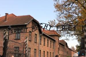 10 Auschwitz-14-2-282